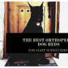 The Top 6 Best Orthopedic Dog Beds for Giant Schnauzers
